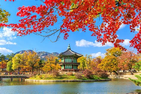 South Korea travel - Lonely Planet