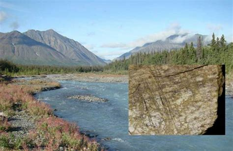24,000-Year-Old Butchered Bones Found in Canada Change