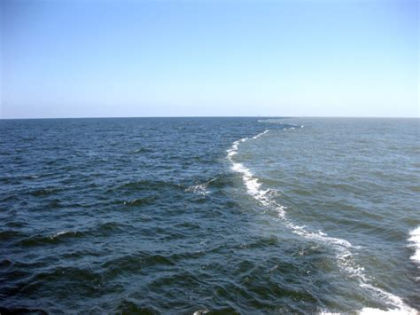 Run-off, emissions deliver double whammy to coastal marine