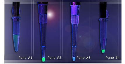 Protein A Resin Antibody Purification PhyTip Columns - Up