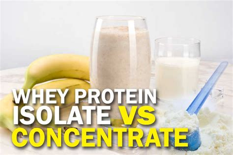 Whey Protein Isolate vs Concentrate: What's the Difference?