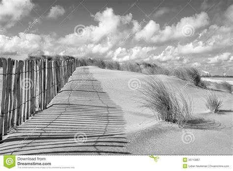 Dune Landscape And Fence In Black And White Stock Image